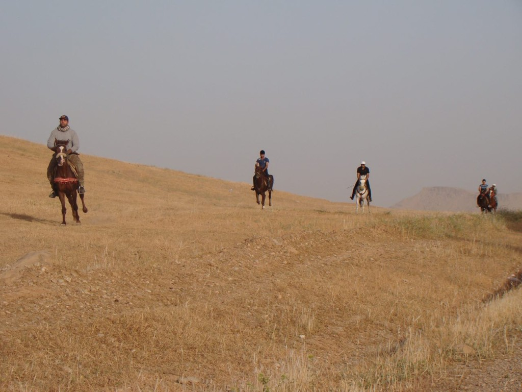 Horse riding in iran